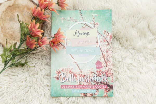 belle-posterboek