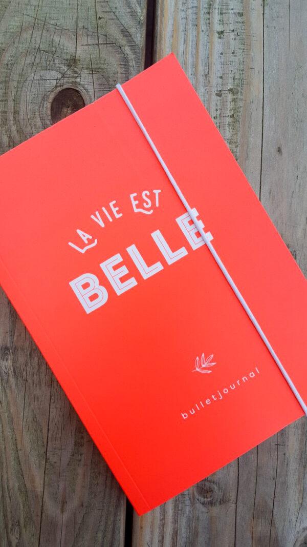 Huisvanbelle-bullletjournal
